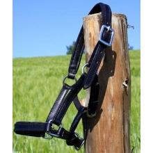 Tysons Breeches Leder-Halfter Minipony schwarz Bild 1