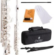Cecilio PO 200S Versilbert C Ton Piccoloflöten mit Koffer Bild 1