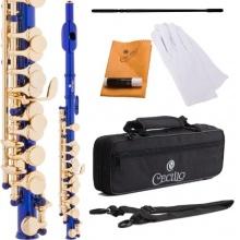 Cecilio PO 200BL Lackiert C Ton Piccoloflöten blau Bild 1