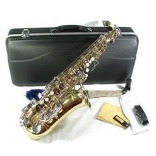 Cherrystone Alt Saxophon gold silber Bild 1
