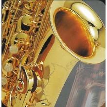 Alt Saxophone AS 1 mit Koffer Bild 2