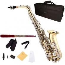 Cecilio AS 280LN Goldlack Vernickelt Eb Alt Saxophon Bild 1