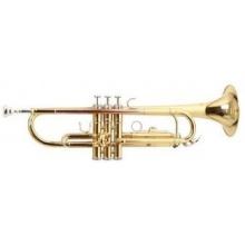 Bb Trompete Roy Benson TR 101 Bild 1