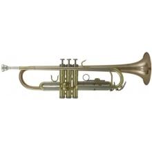 Roy Benson Bb Trompete TR 202G Student Pro Series Bild 1