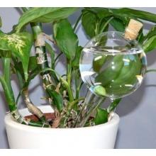 Lupi Durstkugel mit Korken Bewässerungskugeln Durstkugeln DKMK Bild 1