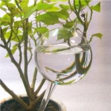 Lauscha Glaskunst Durstkugel Bewässerungskugel klar ca. 8,5cm Bild 1