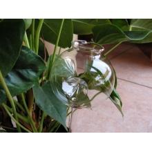 3 Durstkugeln / Bewässerungskugeln, 3 Reflexe, 8cm, mundgeblasen Lauscha Bild 1