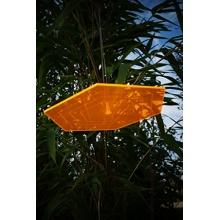 Sonnenfänger 6 - Eck 20cm Scheibe mit Gravur Bild 6