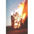 Edelrost Feuerkorb Drache viereck mit Ascheablass 65cm FA10187 Bild 1