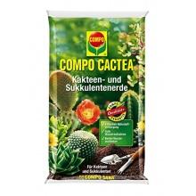 Compo Kakteendünger Cactea Kakteen, 10 L Bild 1
