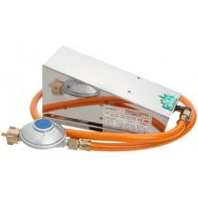Bio Green Gewächshausheizung Frostwächter Mini 800 W Bild 1