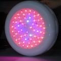 180W LED Pflanzenleuchte Grow Lamp Panel,arespark Bild 1