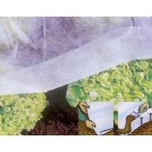 Filmer 25037 Garten-Vlies, 10 x 1.5 m, weiß Bild 1