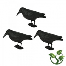 3 x Rabe, Krähe, Taubenschreck,Vogel Abwehr von mgc24 Bild 1