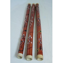 Four Elements Bambus Didgeridoo Bild 1