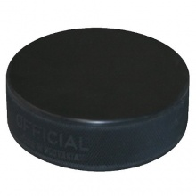 Eis Hockey Puck vin vegum Bild 1
