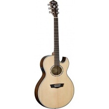 Washburn EA20SNB Akustikgitarre Bild 1