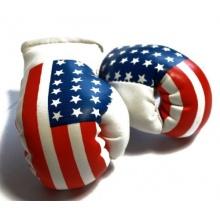 Doktor Hardstuff - Mini Boxhandschuhe / USA Bild 1