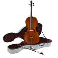 Archer Cello und Fiberglaskoffer Bild 1