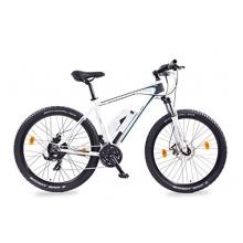 Leon Cycle 27,5 Zoll Elektrofahrrad E-Bike ALU 36V Bild 1