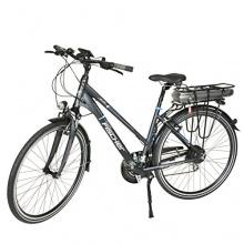 Fischer E-bike Proline 24 Gangcera,Anthrazit, 28Zoll Bild 1