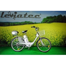 Leviatec Elektrofahrrad E-Bike Z1eb 250 W, 36V Silber Bild 1
