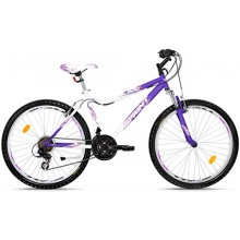SPRINT Mountainbike 26 Zoll MTS Hardtail, 18 Gang Bild 1