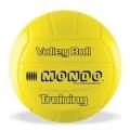 Volley Ball von Mondo Bild 1