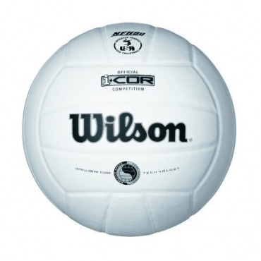 Wilson Volleyball i-Cor Competition Silver, weiß Bild 1