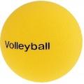 Sport-Thieme Volleyball Bild 1
