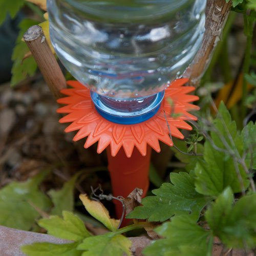 wasserspender fur pflanzen caraselle wasserspender bew sserungssystem f r pflanzen test