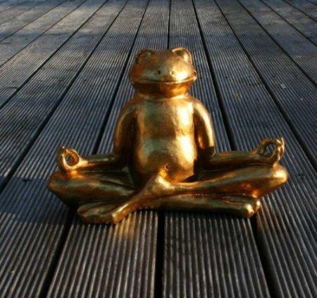 goldener gl cks frosch im lotussitz yoga feng shui test