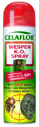 celaflor wespen k o spray 500 ml wespenabwehr test. Black Bedroom Furniture Sets. Home Design Ideas